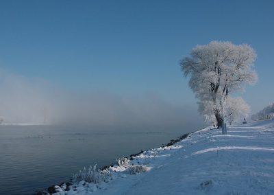 sneeuw-vorst-maas-heusden